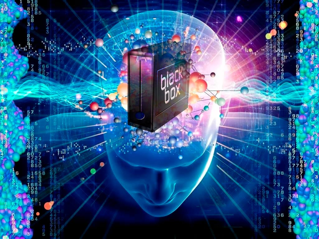 neuromarketing cervello black box